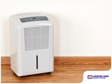 4 Signs You Need a Dehumidifier